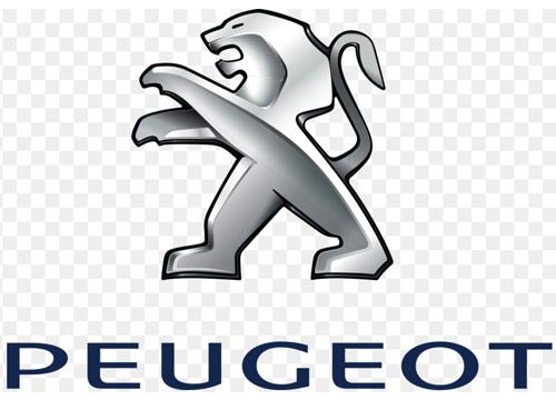 Peugeot Boxer campervan stickers